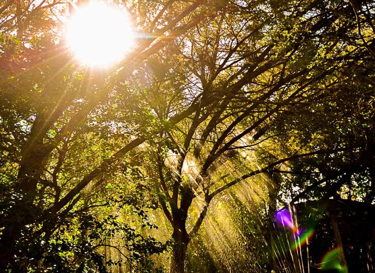 Casa del Sol Vision Image